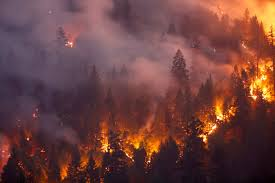 Fires Today