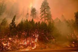 Calador Fire Spreading to Lake Tahoe