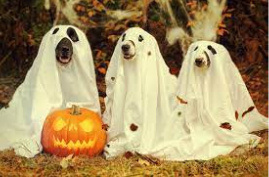 15 Group Halloween Costumes